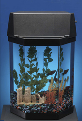 aquarium discount conseils pour acheter un aquarium pas cher. Black Bedroom Furniture Sets. Home Design Ideas