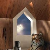 Lambris - Collection Tigerwood - Europlac